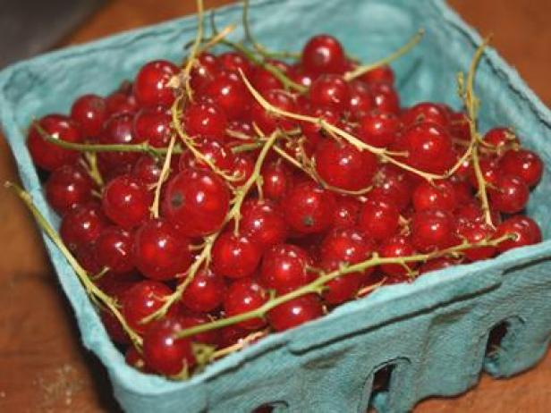 currants_lead