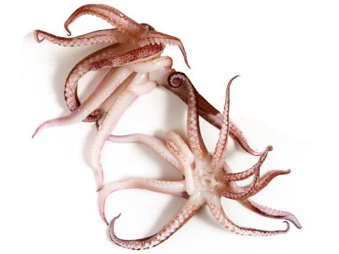 A Guide for Buying and Cooking Octopus