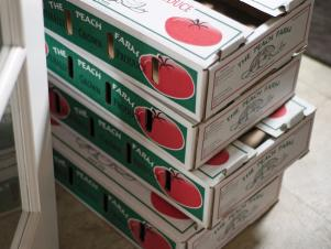 Tomato_canning Boxes_s4x3